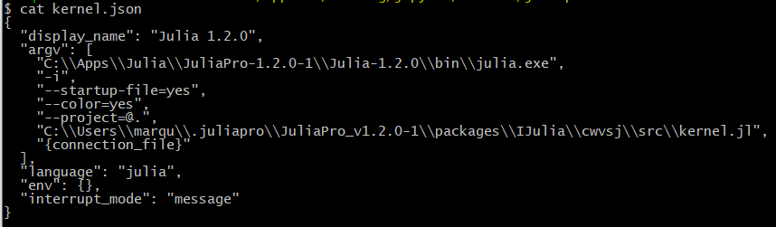 Jupyter Julia-1.2.0 Kernel.json Before