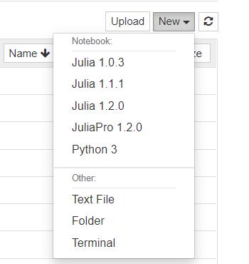 Jupyter Julia-1.2.0 Kernel After